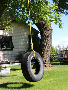 Cutest country charm on 5 acres Strathcona County Edmonton Area image 1