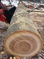 Firewood Logs 11ft BUY 2 GET 1 FREE!! Hickory