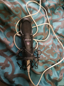 Condensor microphone with shockmount and pop filter