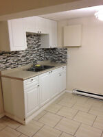 Recently reno'd, clean and dry! 1br + den bsmt apt. $675 + H NOW