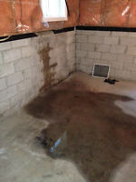 WATERPROOFING BASEMENT, CRACK REPAIR, INTERIOR & EXTERIOR REPAIR