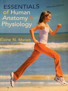 Essentials of Human Anatomy & Physiology  Cornwall Ontario image 1
