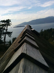 Rooof De Moss & treatment......Gutters.....Power Washing.... North Shore Greater Vancouver Area image 6