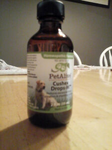 Dog Natural Remedies