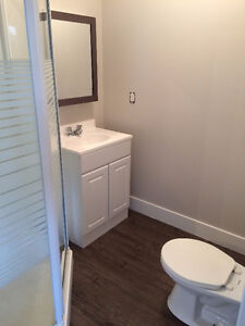 Moden Renovated Studio Suite - Available Dec.1 Prince George British Columbia image 3
