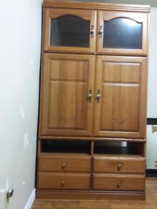 Wired unit cabinet tv storage