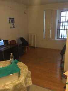 1 1/2 Apartment in the McGill Ghetto for Lease Transfer in July