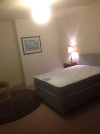 *SORRY THIS ROOM IS TAKEN NOW* - Spacious Double Room to Rent