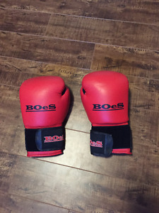 BOeS 12oz Boxing Gloves