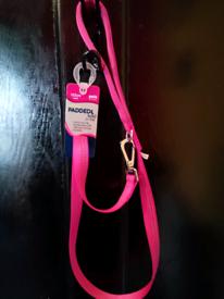 Dog collar harness lead