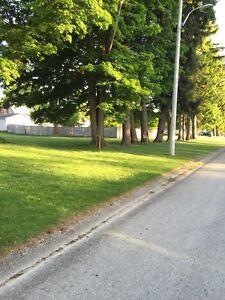 Residential lot for sale 773 Elizabeth st Brussels Stratford Kitchener Area image 3