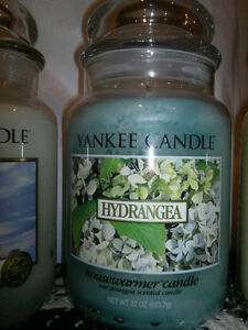 Yankee Candle ' Hydrangea ' Scent