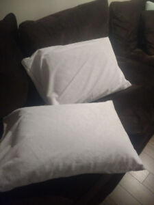 Two Sleep Innovations Quilted Memory Foam Pillows for Sale!