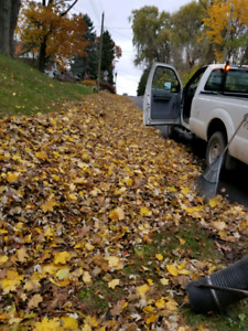 Fall Clean up Help Need