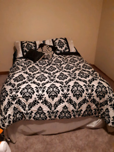 2 Comforter sets for the price of 1!