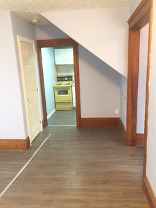 Completely Renovated Bachelor Apartment - Near the University