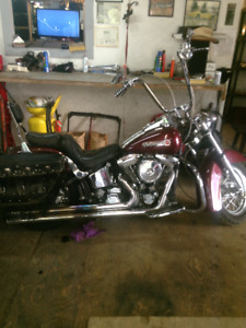 87 Harley Softtail