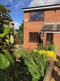 2 Bed Semi Shaw for let