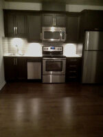 3½ + Den, new condo for rent 1390$ in Downtown Montreal