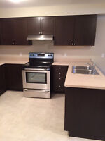 Under Construction - Lower Unit - 2 Bedroom with Den