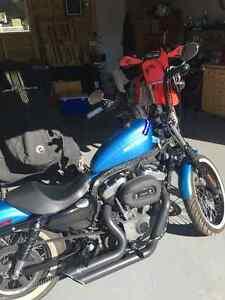 2011 Harley Davidson 1200 Nightster