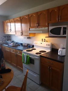 Room to rent in two bedroom apartment