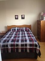 Furnished room near Bull Arm and Long Harbour