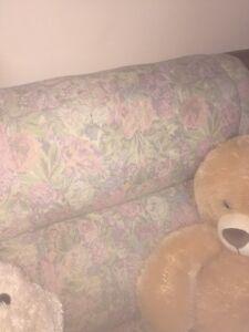 Sofa bed  Kitchener / Waterloo Kitchener Area image 3