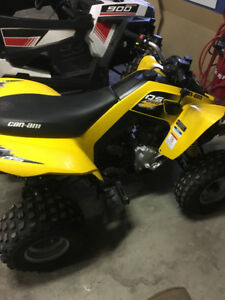 2017 CANAM DS250