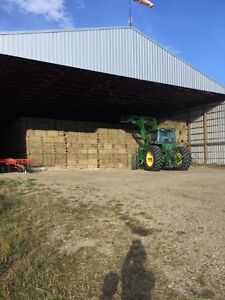 Timothy hay & Orchard Timothy Alfalfa hay for sale