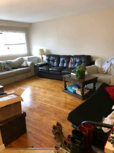 Room for rent in all student building! $510