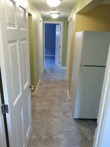 Three Hills Basement suite $750 utilities included