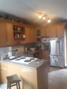 4 month sublet in Annex: May 1 - August 31