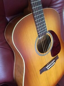 Seagull Acoustic Guitar