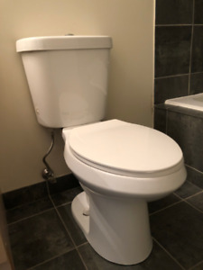 Glacier Bay Toilette