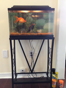 Fish tank 10 gallon with fishes, stand and accessories