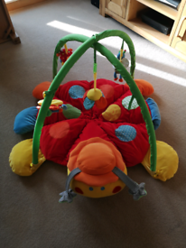 Lotty ladybird playmat & gym