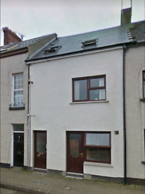 Excellent 1 bed apartment town centre stone row Coleraine