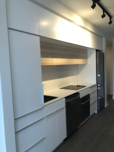 New 3 1/2 condo for rent in downtown, Near metro Lucien L'Allier