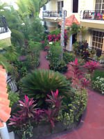 Cozy well stocked condo for rent in Bavaro, Dominican Republic