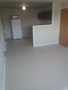 NEWLY RENOVATED, BRIGHT, SPACIOUS, OPEN CONCEPT 2 BEDROOM