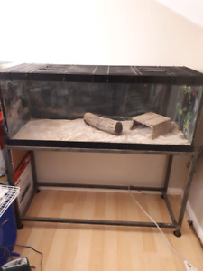 60 gallon terrarium tank with Stand/Lid