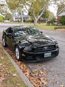 Mint condition v6 2014 mustang LOW KM