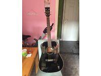 Hudson acoustic