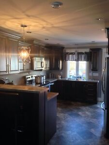Beautiful 2 Apartment in Southlands St. John's Newfoundland image 5