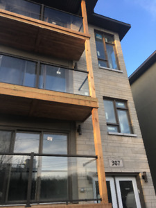 307 Picton Ave. New triplex-3 bdr. unit for rent in Westboro