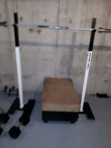 Northern lights squat stands and 45lbs dumbells