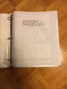 ANATOMY AND PHYSIOLOGY 9th Edition by Kevin T. Patton