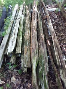 Longeur de bois de Pruche