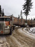 CTL and Long Log Trucks Needed ASAP!